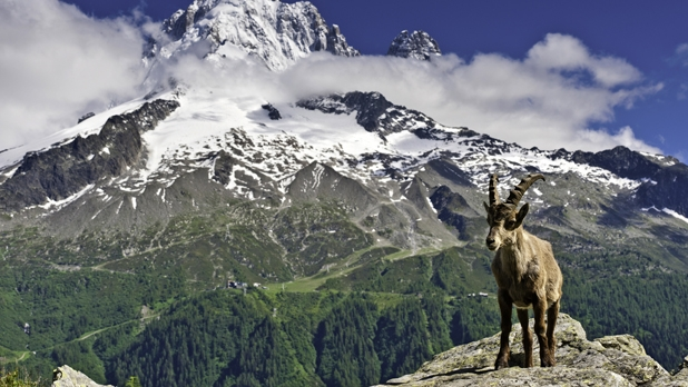 mj-618_348_tour-du-mont-blanc-france-italy-and-switzerland-100-miles-50-greatest-hikes