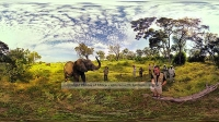 A elephant captured with 360H6 at the Living With Elephants Sanctuary, Botswana.