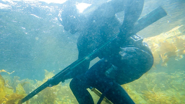 Where to Get Hooked on Spearfishing - Men's Journal