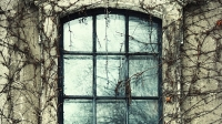 mj-618_348_windows-10-items-to-salvage-from-your-home-renovation-that-are-better-than-new