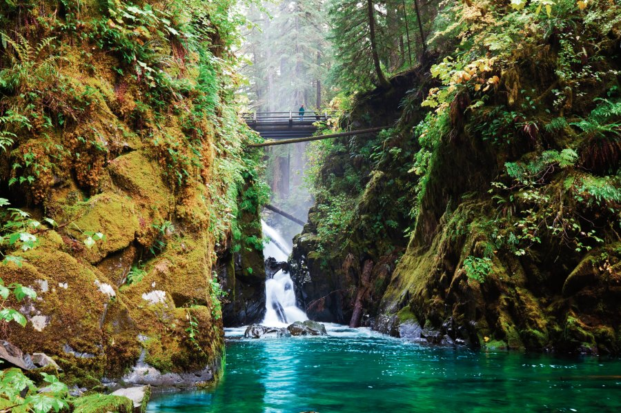 olympic-national-park_fiftyplacestocamp_p210-a0e6d551-8f40-4c6f-bde7-2a02a989c348