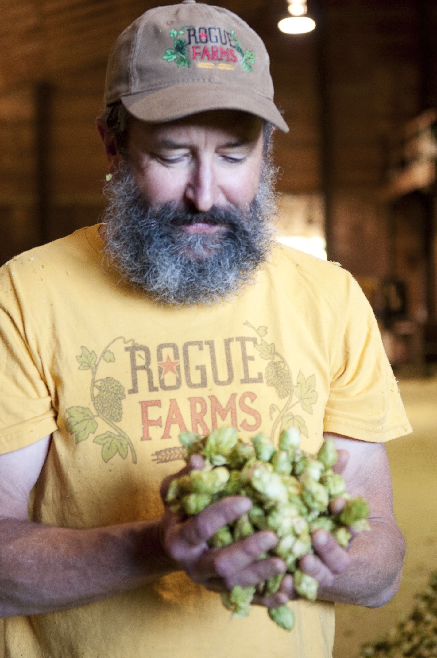 Brewmaster John Maier inspects Rogue Farms hops.